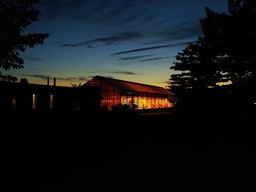 greenhouse in the dark