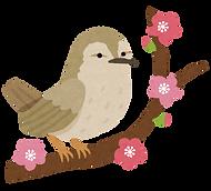 bird_uguisu_edited.png