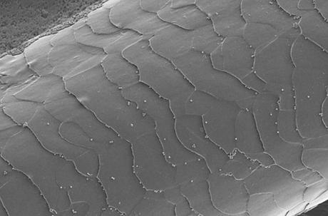 Nanostructure.png