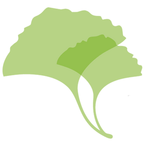 Gingko Leaf Logo   Levy Senior Center Foundation