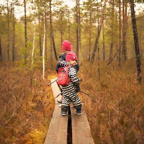 Tremanskärrin luontopolku, Espoo