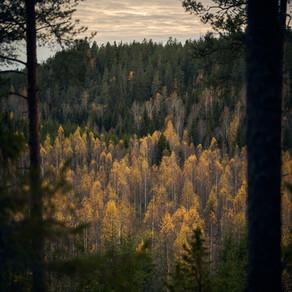 Jaanankallio, Hyvinkää
