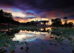 Cyberjaya Lake view