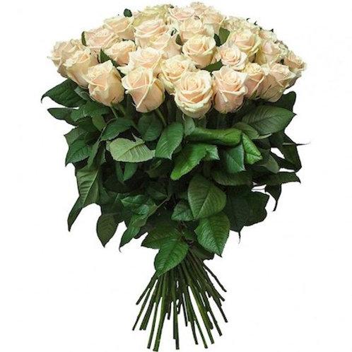 Розы Талея Россия (от 20 шт.)