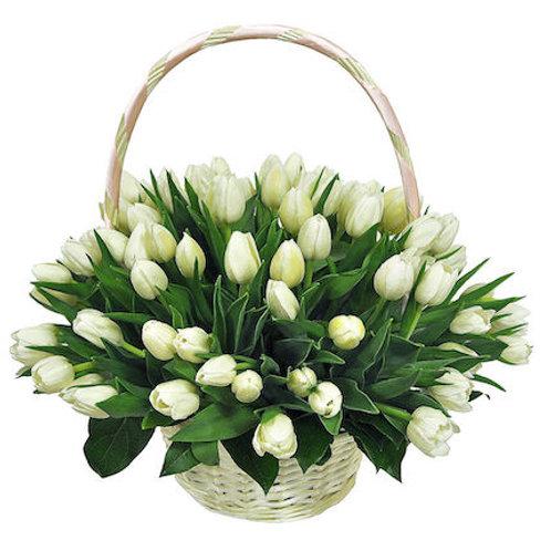 151 белый тюльпан в корзине