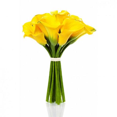 Каллы желтые поштучно