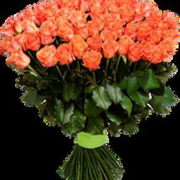 101 коралловая кенийская роза