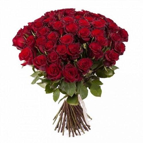 "51 роза премиум Эквадор ""Эксплорер"""