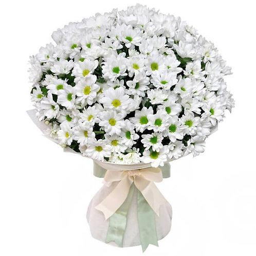 """Букет из 25 белых кустовых хризантем """"Бакарди"""""""