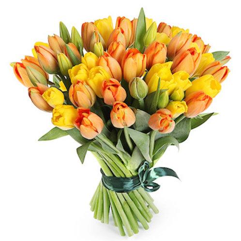"""Пионовидные Тюльпаны """"Монселла"""" желтые с красным"""
