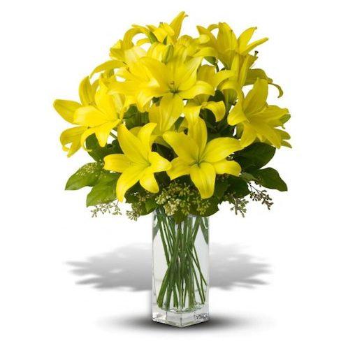 19 желтых азиатских лилий