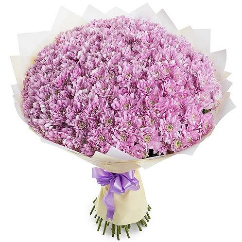 Букет из 51 розовой кустовой хризантемы Балтика