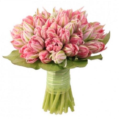 Пионовидные розовые Тюльпаны (от 50 шт.)
