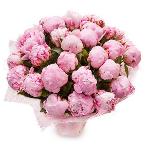 Пионы нежно-розовые (от 10 шт.)
