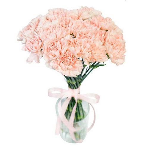25 нежно-розовых гвоздик