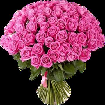 Розы розовые Кения (от 60 шт.)