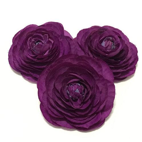 Ранункулюсы фиолетовые