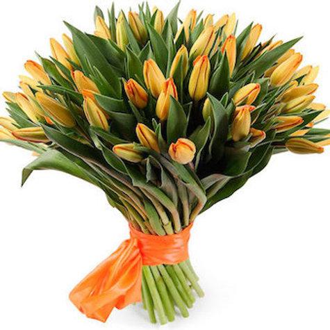 51 оранжевый тюльпан