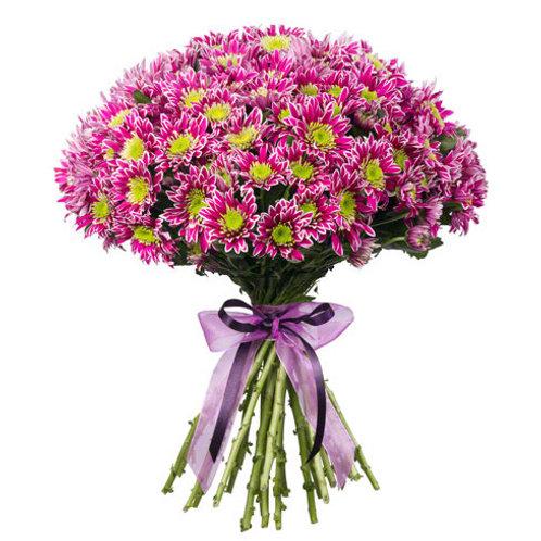 Сиреневые кустовые хризантемы поштучно (от 1 шт.)