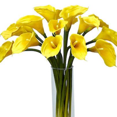 Каллы желтые (от 20 шт.)