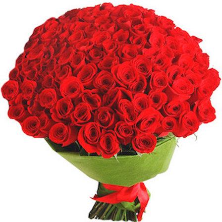101 роза премиум Эквадор Нина