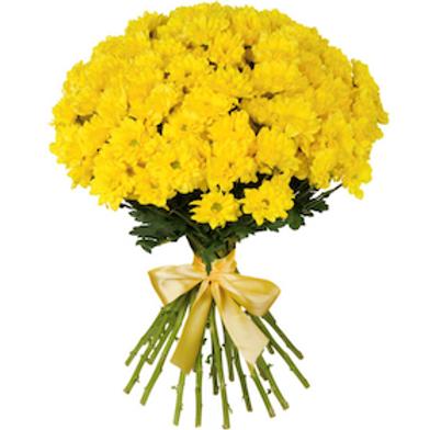 Хризантема кустовая желтая (от 5 шт.)