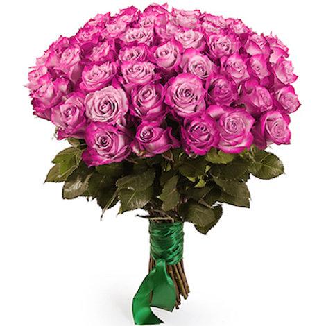 """51 роза премиум Эквадор """"Дип Перпл"""""""