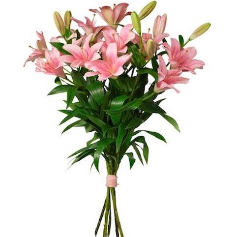 9 розовых азиатских лилий