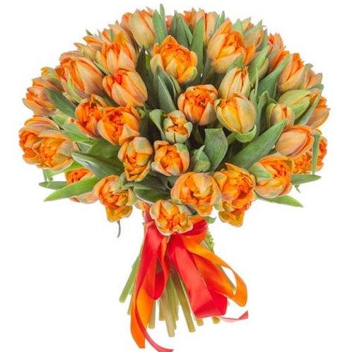 Пионовидные оранжевые Тюльпаны (от 50 шт.)