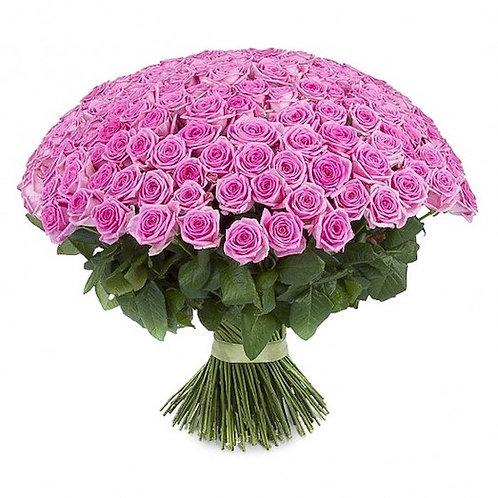 """301 роза """"Аква"""""""
