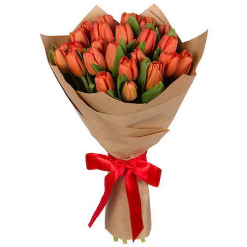 25 коралловых тюльпанов