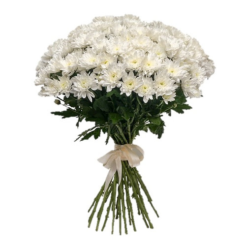"""Белые кустовые хризантемы """"Балтика"""" поштучно (от 1 шт.)"""
