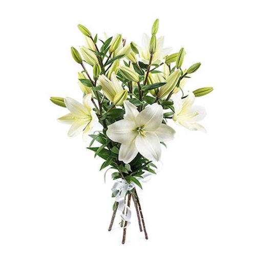 Белые азиатские лилии поштучно