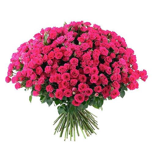 101 малиновая кустовая роза