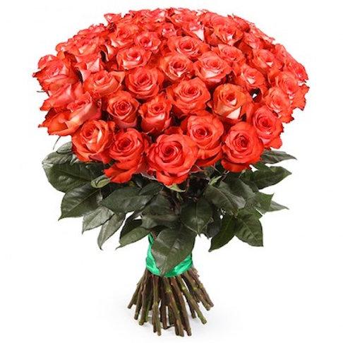 """51 роза премиум Эквадор """"Нина"""""""