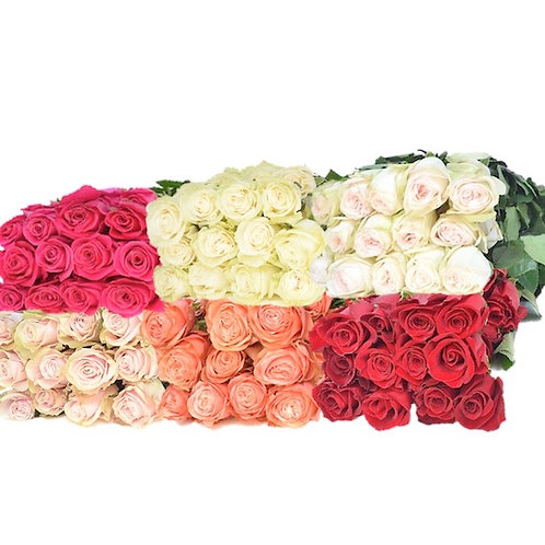 Розы Эквадор Микс (от 100 шт.)