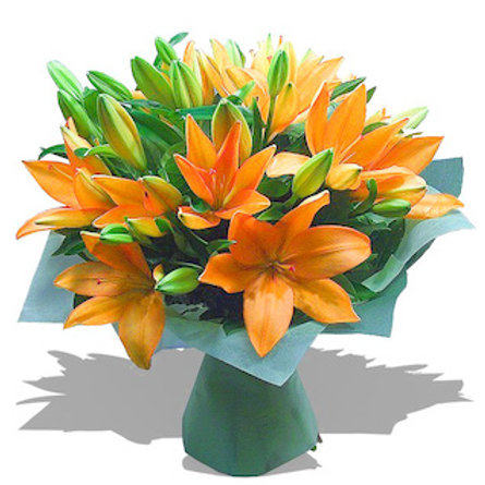 29 оранжевых азиатских лилий