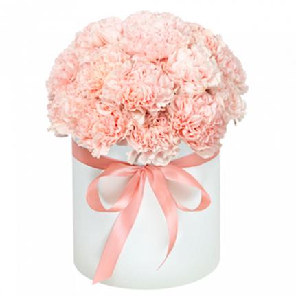 51 нежно-розовая гвоздика в шляпной коробке
