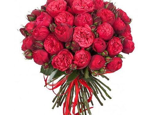 Кустовые красные пионовидные розы поштучно (от 10 шт.)