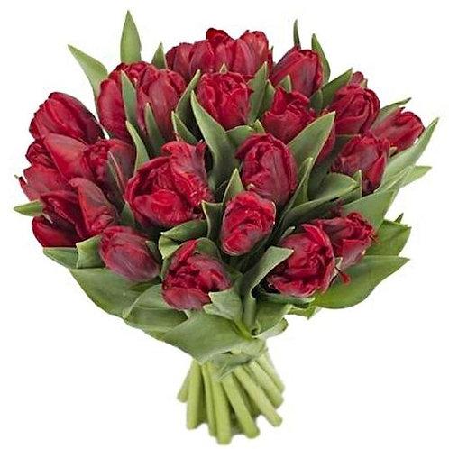 Попугайные красные тюльпаны Роккоко (от 50 шт.)