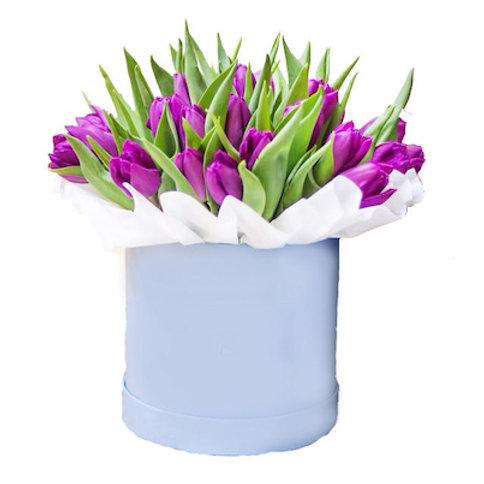 25 фиолетовых тюльпанов в шляпной коробке
