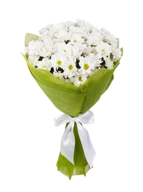 """5 белых кустовых хризантем """"Бакарди"""""""