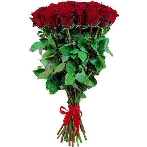 Розы Эксплорер Эквадор (от 25 шт.)