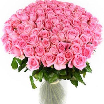 101 розовая кенийская роза