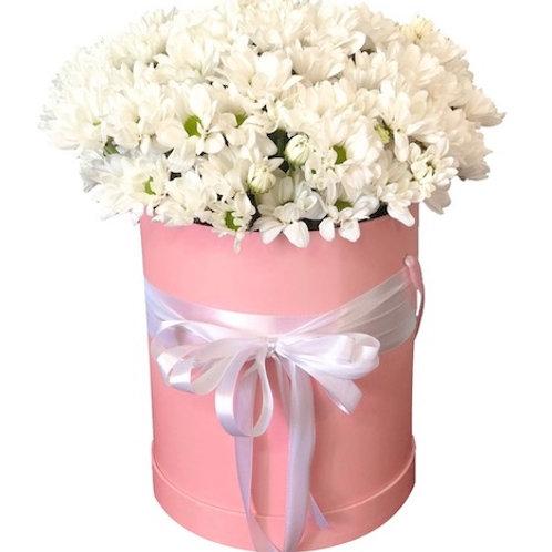 """15 белых кустовых хризантем """"Бакарди"""" в шляпной коробке"""