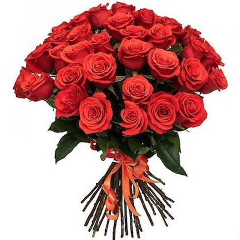 "Розы ""Нина"" Эквадор"