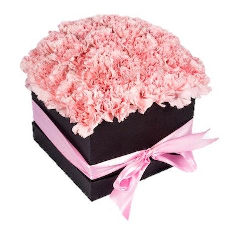 51 нежно-розовая гвоздика в квадратной коробке