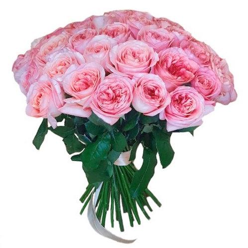 """51 пионовидная роза """"Лондон Ай"""""""