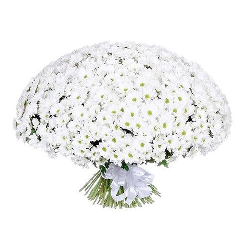"""Букет 101 белая кустовая хризантема """"Бакарди"""""""