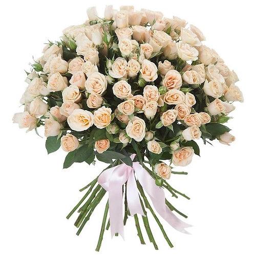 31 кустовая кремовая роза